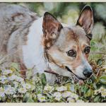Corgi painting